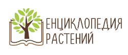 Мини энциклопедия растений